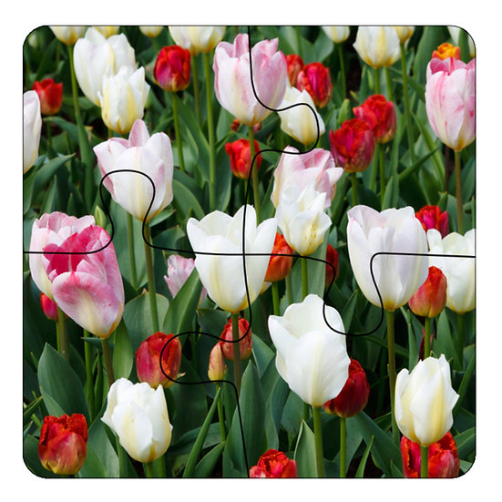 Tulips (4pc Jigsaw Drink Coasters)