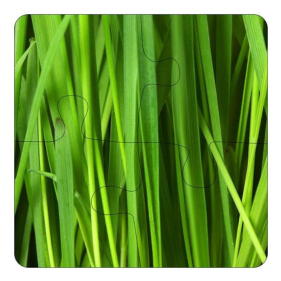 Grass (4pc Jigsaw Drink Coasters)