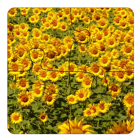 Sunflowers (4pc Jigsaw Drink Coasters)