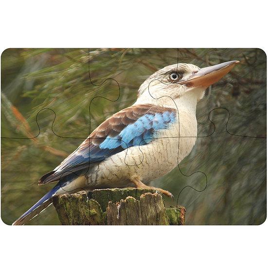 Kookaburra (6pc Jigsaw Drink Coasters)