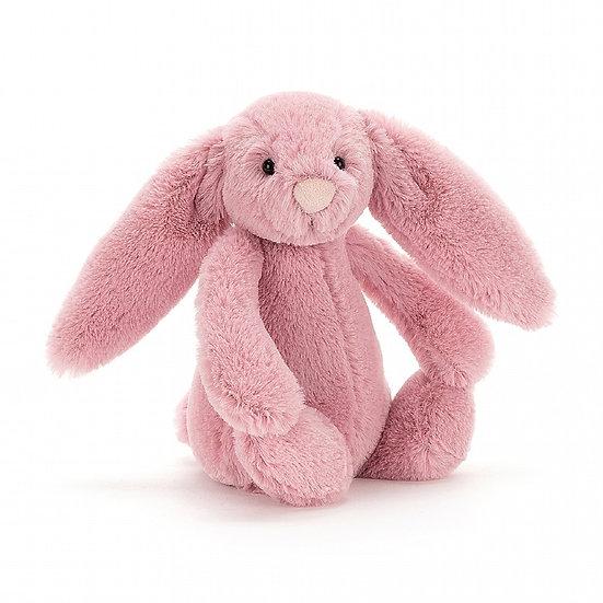 Bashful Bunny Pink Tulip