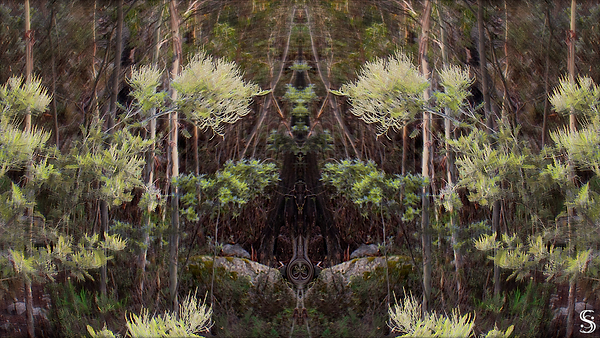 forest spiret watermark v2 .png