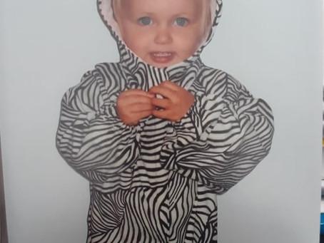 The Zebra made me do it!