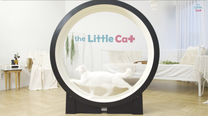 Little_Cat___The_cats'_intelligent_perso