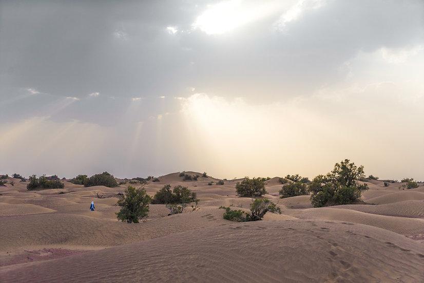 Sahara#1