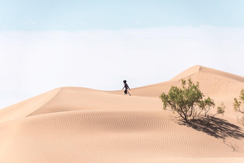 Sahara#5