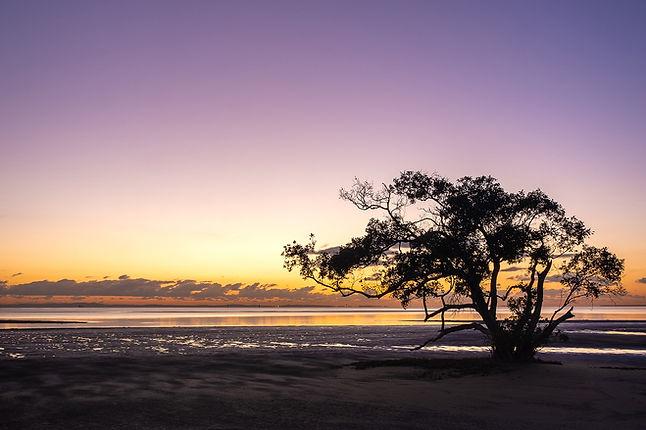 Nudgee Beach 4crop.jpg