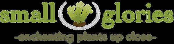logo-trial.png
