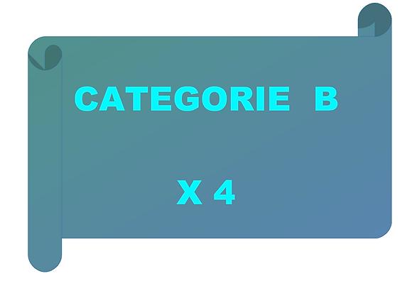 4 entraînements de catégorie B