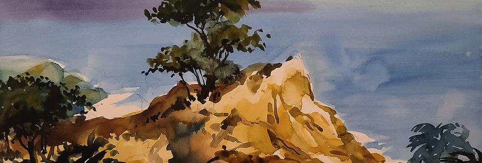 """Original Watercolor Demo """"West Coast Pine"""""""