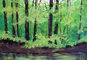 45 nippersink creek