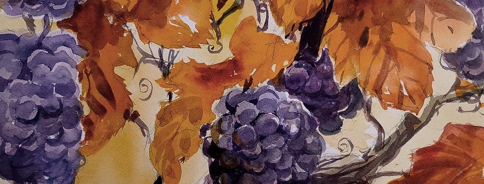 """Original Watercolor Demo """"Grapes"""""""