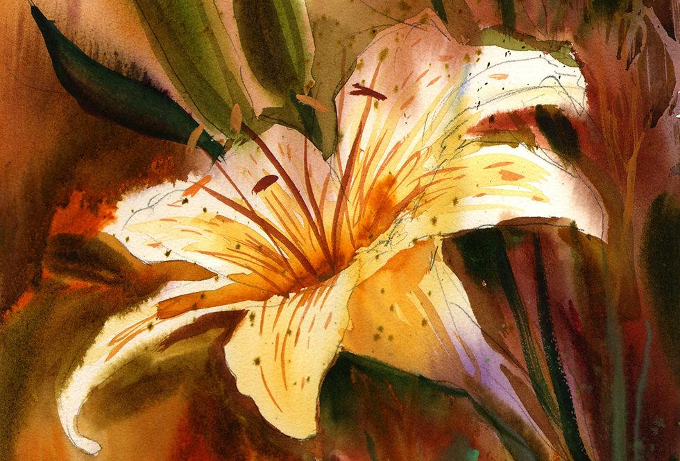 """Original Watercolor Demo """"Lily"""""""