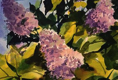 "Original Watercolor Demo ""Loving me some Lilacs"""
