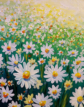 41 daisies