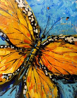 23 butterfly