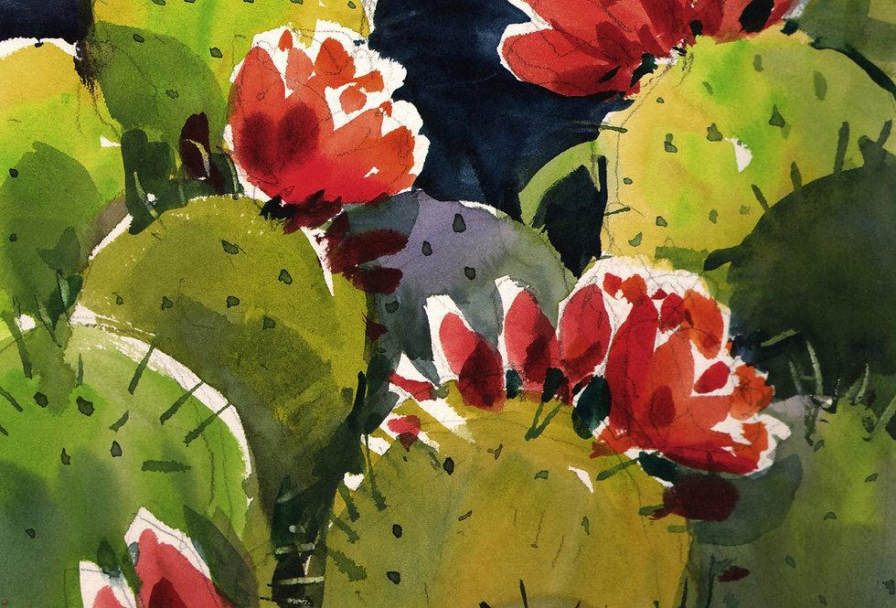 "Original Watercolor Demo ""Arizona Cactus"""