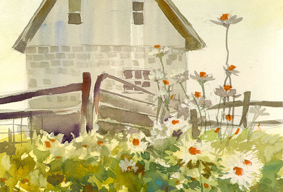 "Original Watercolor Demo ""Barn Daisies"""