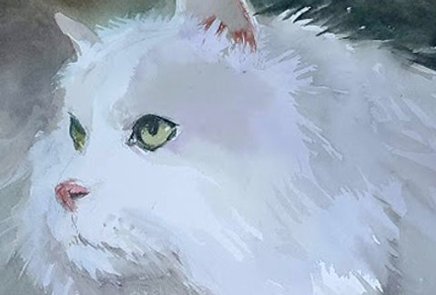 "Original Watercolor Demo ""Snowball"""