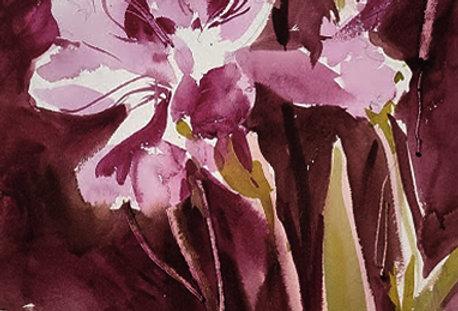 """Original Watercolor Demo """"Flowers Burgundy"""""""