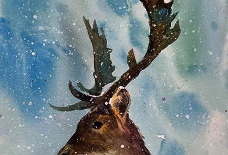 """Original Watercolor Demo """"Deer Me"""""""