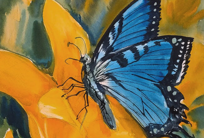 "Original Watercolor Demo ""Blue Butterfly"""