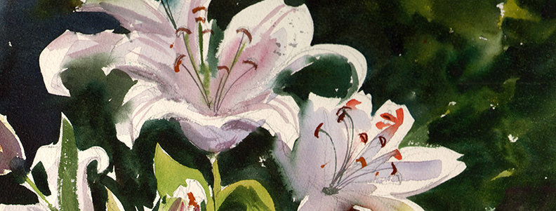 "Original Watercolor Demo ""Lily"""