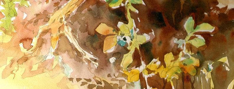 "Original Watercolor Demo ""Wild Flowers"""