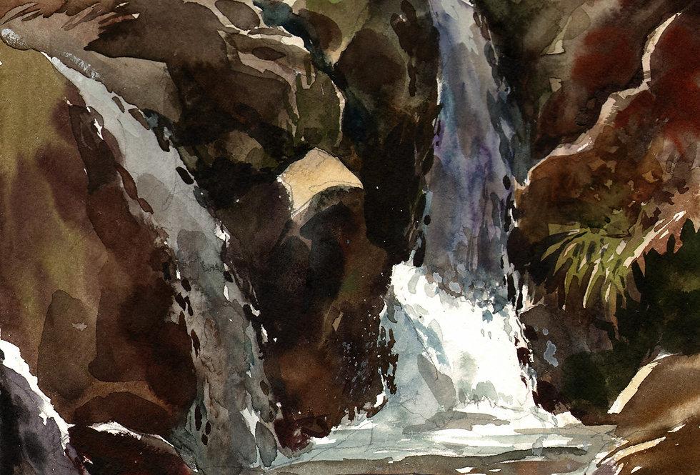 """Original Watercolor Demo """"Congdon Park"""""""