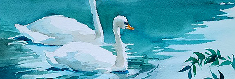 "Original Watercolor Demo ""Swans"""