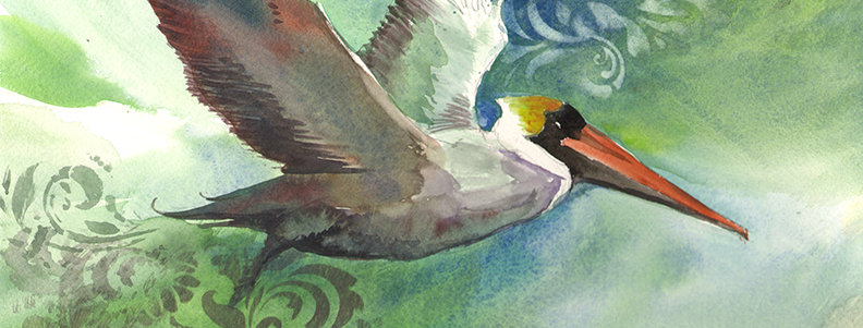 """Original Watercolor Demo """"Fancy Pelican"""""""