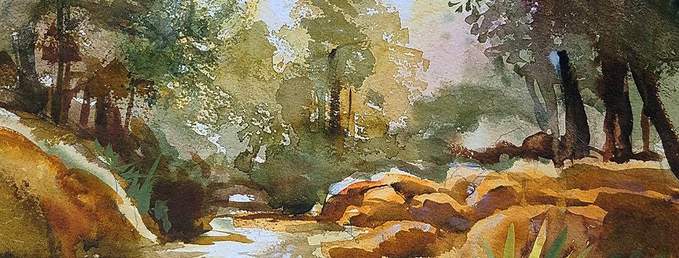 """Original Watercolor Demo """"Sunlight Creek"""""""