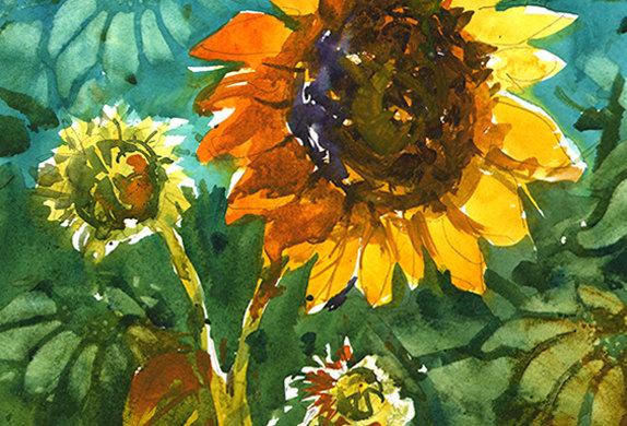"Original Watercolor Demo ""Sunflower"""