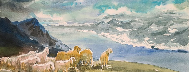 "Original Watercolor Demo ""Mountain Sheep"""