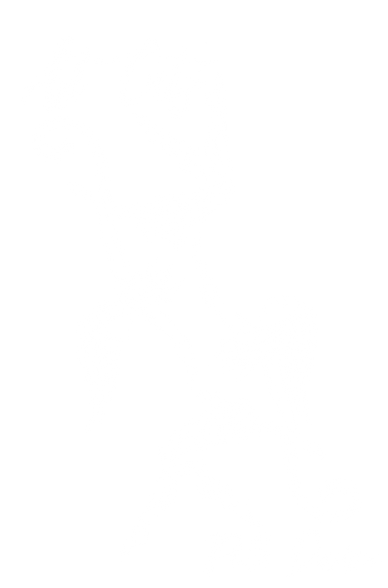 Art Cats Pole Dance