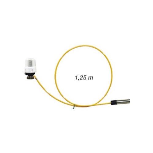 Thermostatic Sensor