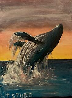 whale drawing.jpg