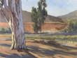 Otay Eucalyptus