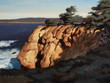 Point Lobos North Inlet