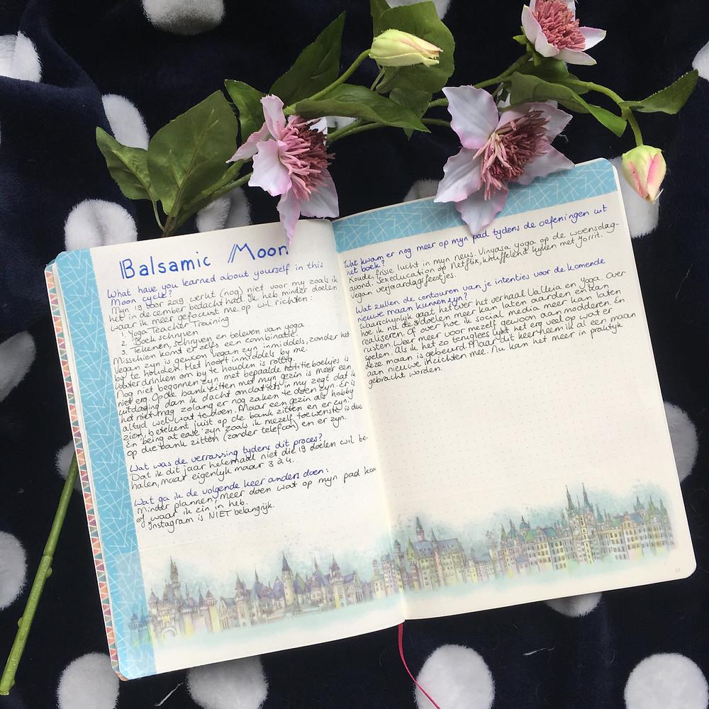 balsamic moon journal