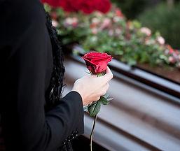 Last Rose.jpg