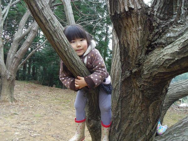 10木登り3.JPG