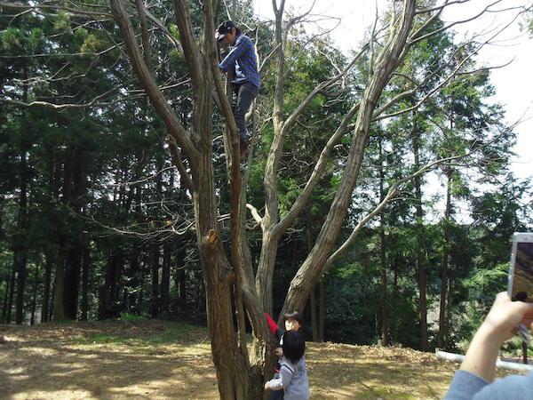 11木登り0.JPG