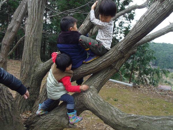 09木登り2.JPG