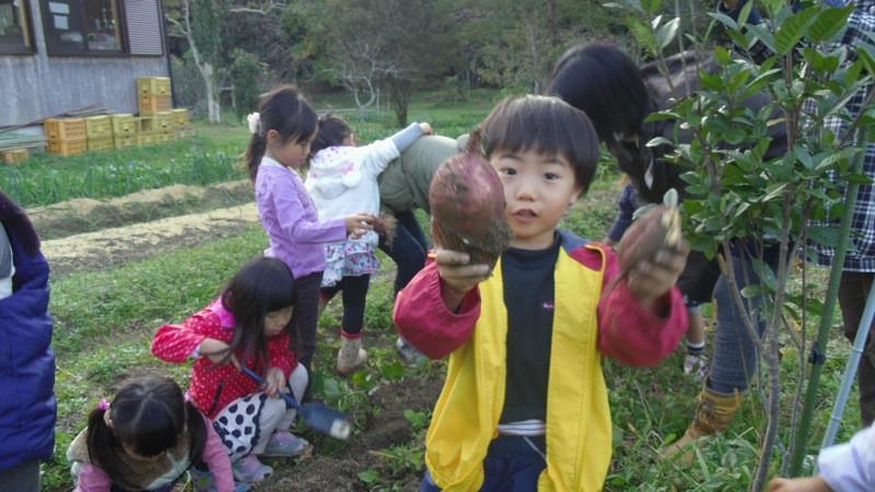 芋掘り2.JPG