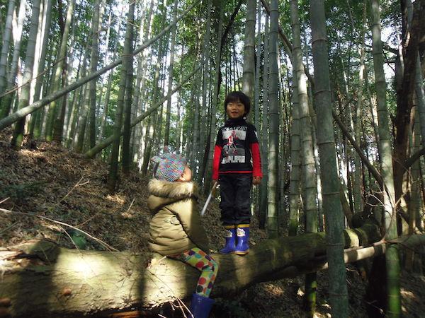 02竹の子2.JPG