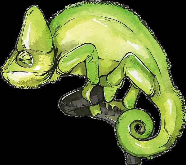 227-2270155_chameleons-vector-chameleon-