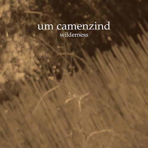 Um Camenzind - Wilderness (2014)