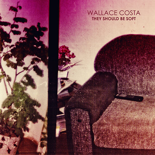 Wallace Costa - They Should Be Soft (2012)