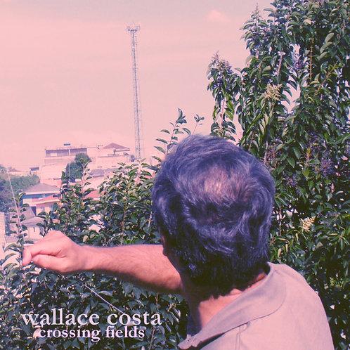 Wallace Costa - Crossing Fields (2010)